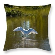 Great White Egret In Sunlight Throw Pillow