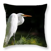 Great White Egret In The Tree Throw Pillow