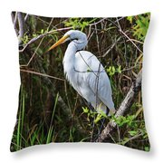 Great White Egret In The Wild Throw Pillow