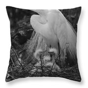 Great White Egret Mom And Chicks In Black Ans White Throw Pillow