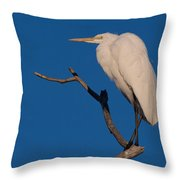 Great White Egret On A Snag Throw Pillow