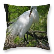 Great White Egret Primping Throw Pillow