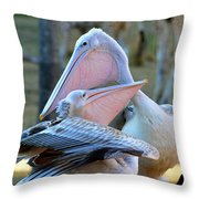 Great White Pelicans Throw Pillow
