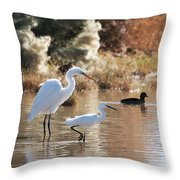 Greater Egret Lesser Egret And Coot Throw Pillow