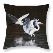Greater Egrets Meet Up  Throw Pillow