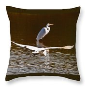 Greater Egrets Meeting Up Throw Pillow