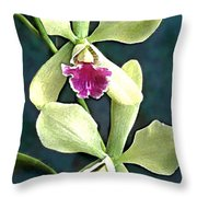 Green And Purple Cattleya Orchids Throw Pillow