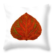 Green And Red Aspen Leaf 3 Throw Pillow