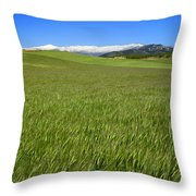 Green And Snow Throw Pillow