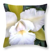 Green And White Cattleya Orchid Throw Pillow
