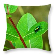 Green Beetle Foraging Throw Pillow