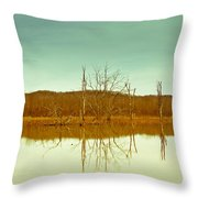 Green Bottom In Winter Throw Pillow