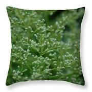 Green Bulbs By Jammer Throw Pillow