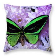Green Butterfly And Mums Throw Pillow