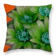 Green Cactus Flowers Throw Pillow