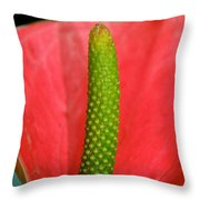Green Candle Throw Pillow