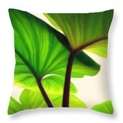 Green Canopy Pastel Throw Pillow