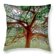 Green Canopy Throw Pillow by Terry Reynoldson