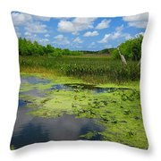 Green Cay Nature Preserve Beauty Throw Pillow