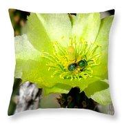 Green Cholla Beauty Throw Pillow