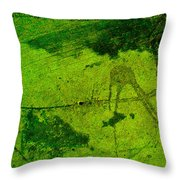 Green Color Sigh Throw Pillow