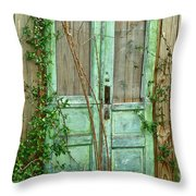 Green Cottage Doors Throw Pillow