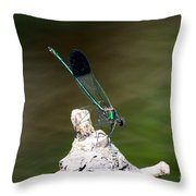 Green Damselfly  Throw Pillow