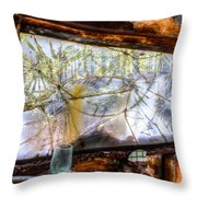 Green Drinking Glass And Smoky Bronken Windshield Throw Pillow