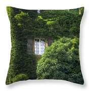 Green Entrance Throw Pillow