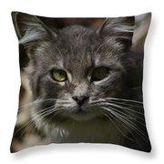 Green Eyed Kitty Cat Throw Pillow
