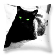 Green Eyed Kitty Throw Pillow