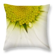 Green Fades To White Throw Pillow