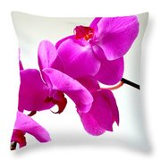 Green Field Sweetheart Orchid No 1 Throw Pillow