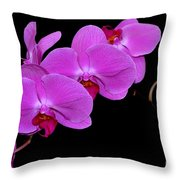 Green Field Sweetheart Orchid No 2 Throw Pillow