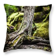 Green Forest Throw Pillow by Aaron Aldrich