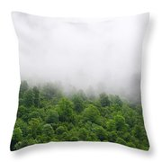 Green Forest With Clouds Throw Pillow