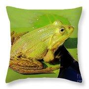 Green Frog 2 Throw Pillow