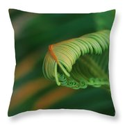 Green Frond  Abstract Throw Pillow