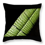 Green Glass Throw Pillow