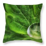 Green Globe Throw Pillow