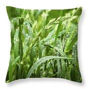 Green Grass After Rain Throw Pillow
