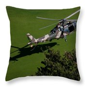 Green Grass Landing  Throw Pillow