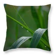 Green Grass Of Summer Throw Pillow