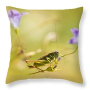 Green Grasshopper On Violet Bell Flowers Throw Pillow