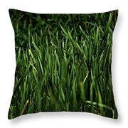 Green Green Grass ... Throw Pillow
