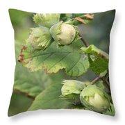Green Hazelnuts Throw Pillow