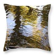 Green Head Mallard Duck Throw Pillow