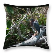 Green Heron 1 Throw Pillow
