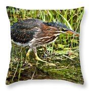 Green Heron And Catch Throw Pillow