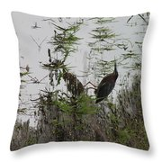 Green Heron At The Pond Throw Pillow